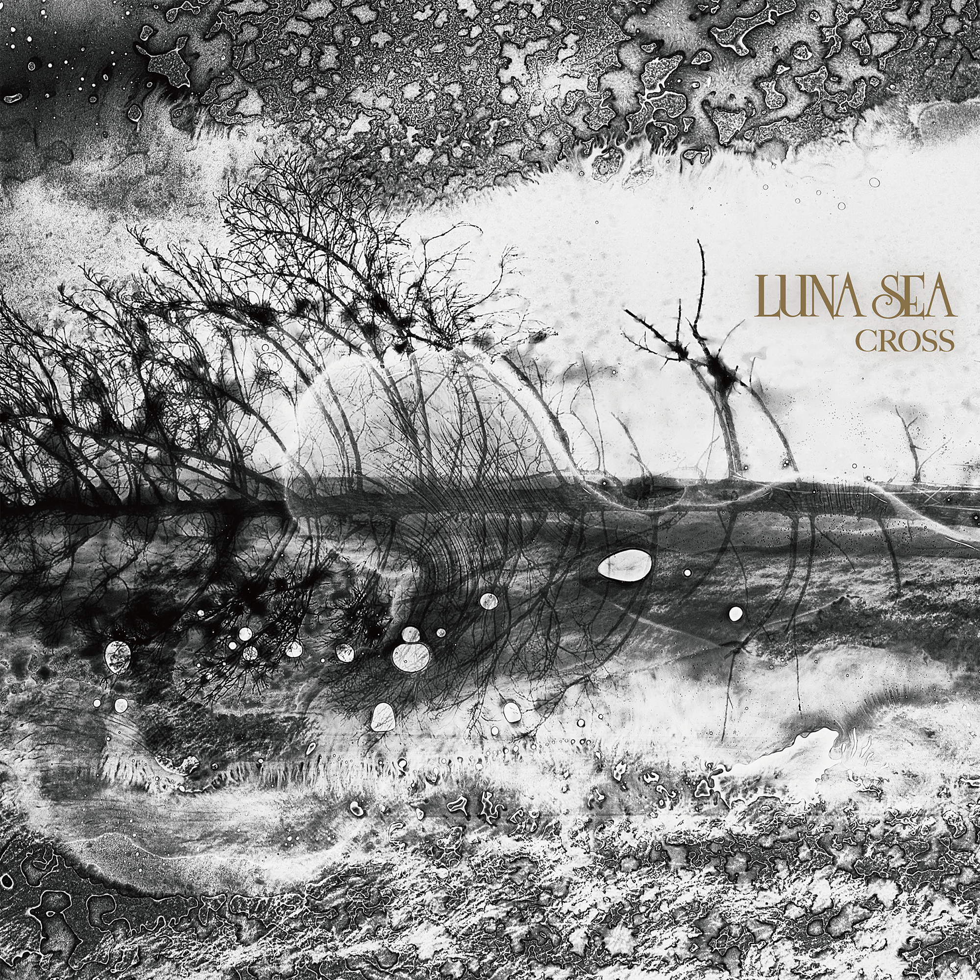 LUNA SEA  NEW ALBUM 『CROSS』通常盤