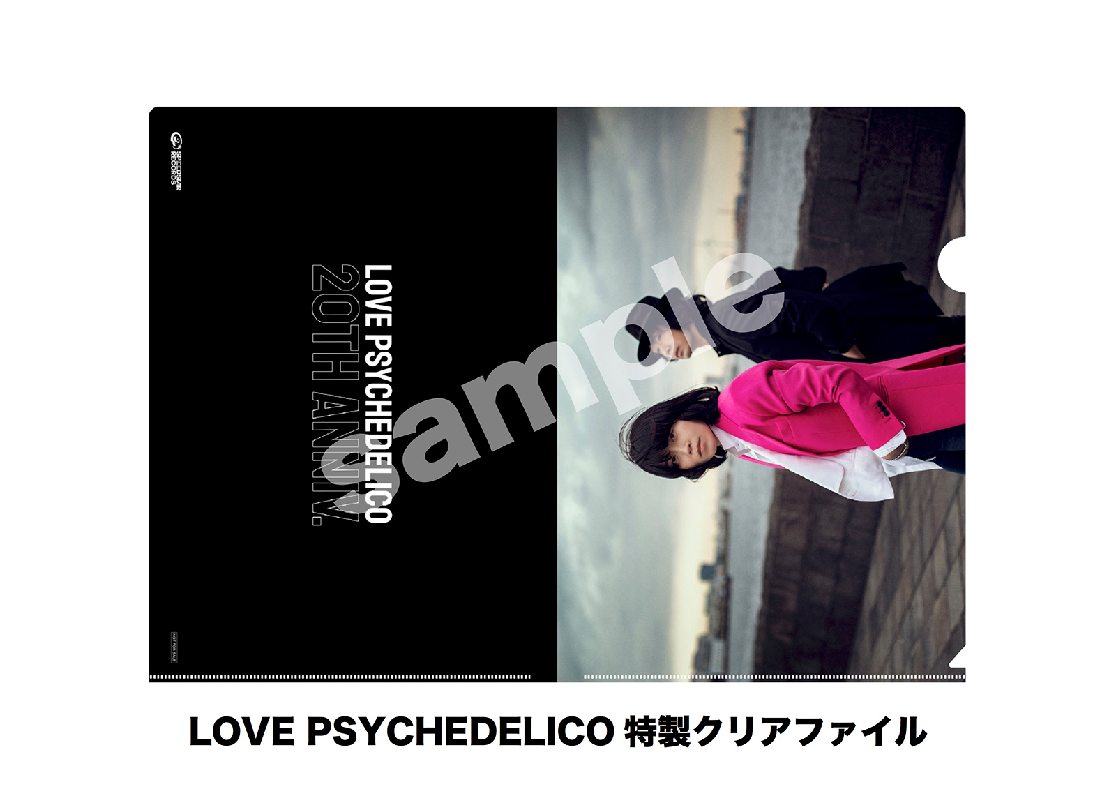 「LOVE PSYCHEDELICO特製クリアファイル」