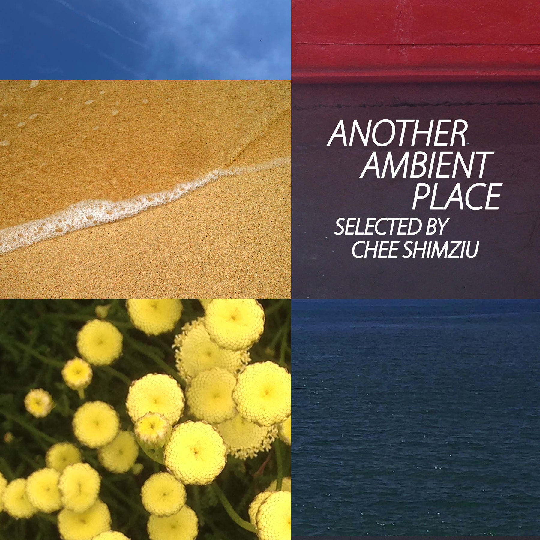 J-DIGS: Another Ambient Place : selected by Chee Shimizu